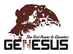 Genesus Inc.